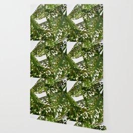 Leaf Light Group Wallpaper