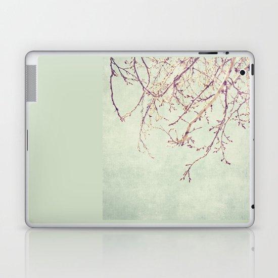 Chinese Spring Laptop & iPad Skin