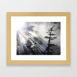 Misty Morning Sunrise Framed Art Print