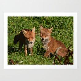 Mr & Mrs Fox 3 Art Print