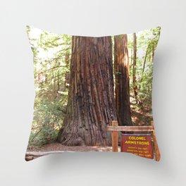 Armstrong Woods 3406 Throw Pillow
