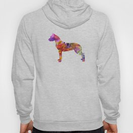 Dogo Argentino in watercolor Hoody