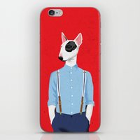 bull terrier iPhone & iPod Skins featuring Skinhead Bull Terrier by drawgood