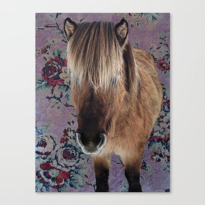 floral Icelandic pony Canvas Print