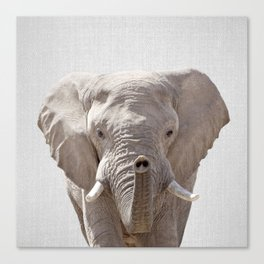Elephant - Colorful Canvas Print