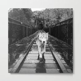 Bridge Wolf Metal Print