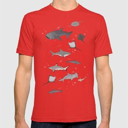 Sharks and Rays T-shirt