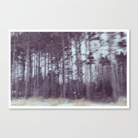forrest Canvas Prints featuring Forrest by Anthony Londer
