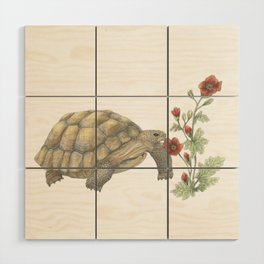 Desert Tortoise & Mallow Wood Wall Art