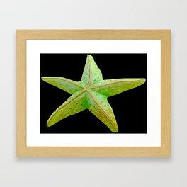 Sea Star (Starfish) by Aloha Kea Photography Framed Art Print