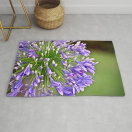 Agapanthus (African Lily) Rug