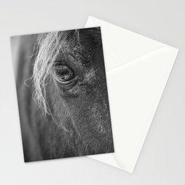Seen Thru The Eye Stationery Cards