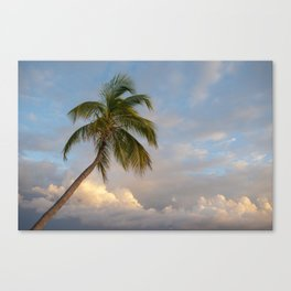 Serenity Over the Gulf Canvas Print