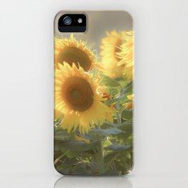 Sunflower Fields Tennessee Fine Art Photography iPhone Case