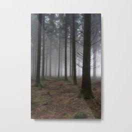 Misty Spruce Woods Metal Print