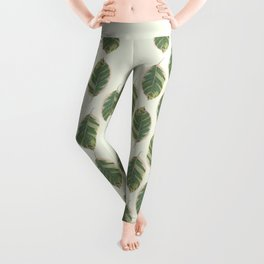 Rubber Tree Ficus Elastica Variegata Leggings