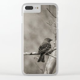 The Quest:  Black and White Bird Antiqued Clear iPhone Case