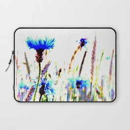 Centaurea flowers Laptop Sleeve