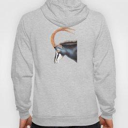 Sable Antelope Hoody