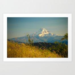Mount Hood from Courtney Ridge Art Print