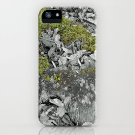 Mossy Stump iPhone Case