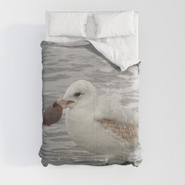Do You Have Change For A Dollar Comforters