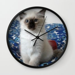 Lucy The Cat and Litle Brother  1 Wall Clock