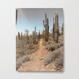 Mesa Metal Print