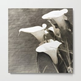Calla Lily Flower Sepia Photo Metal Print