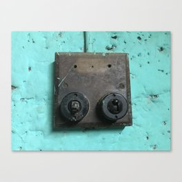 Rustic switches Canvas Print