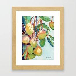 Mangoes Framed Art Print