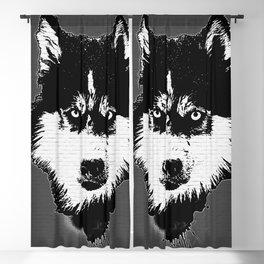 husky dog face grafiti spray art Blackout Curtain