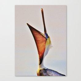 Pelican Yoga Canvas Print