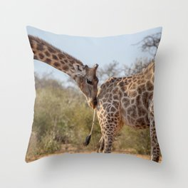 Giraffe 6 Throw Pillow