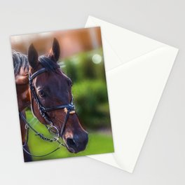 Horse Wall Art, Horse Portrait. Horse looking straight forward closeup. Stationery Cards