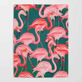 flamingo tropical Poster