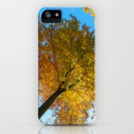 In #autumn, through the #forest iPhone Case