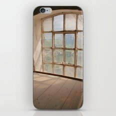 A Millers View iPhone & iPod Skin