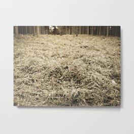 Bracken in the forest Metal Print