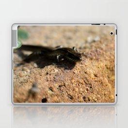 Glazing Laptop & iPad Skin