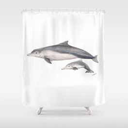 Australian humpback dolphin (Sousa sahulensis) with baby Shower Curtain