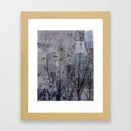Tree Series 2 Framed Art Print