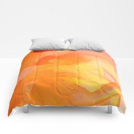 Maternity Comforters