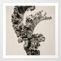 The Kale, Green Art Print