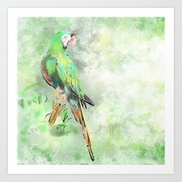 La Gran Lapa Verde Art Print
