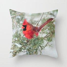 Cocky Cardinal Throw Pillow
