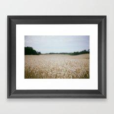Alberta Framed Art Print