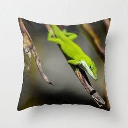 Green Carolina Anole Aloft Throw Pillow