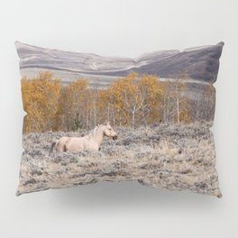 Palomino Roaming the High Plains Pillow Sham
