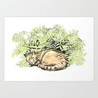 sleeping among the leaves Art Print